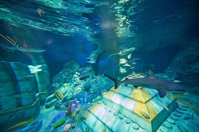 「サブマリン・アドベンチャー」から見た海底の様子。レゴ®ブロックでできた古代遺跡のまわりに本物のサメが出現!