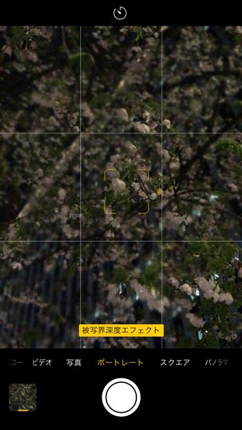 カメラを起動し、「ポートレート」モードに設定して画面にタッチ。スマホが被写体との距離感を自動で検知して、指定した部分にピントを合わせ、そこ以外の距離がある部分をボカしてくれます
