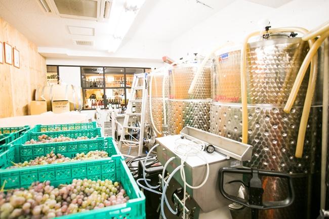 低温発酵タンク、開放タンク、木樽、原料のぶどうなどで醸造所内はギッシリ