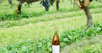 20171122_wine_main