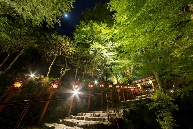 ↑上写真の参道など、神社の各所を照らし出す「新緑のライトアップ」も期間限定で実施(2018年5月26日・27日、夕暮れ〜20時)