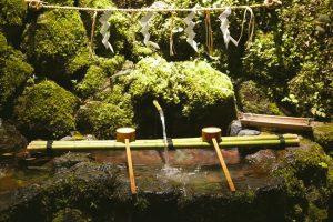 ↑京都市内の料亭の料理人たちも汲みにくるという神水