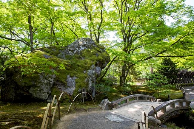 """↑庭の中央部にある、獅子がうずくまっているような形の巨石「獅子岩」。ちなみに「獅子吼の庭」の""""獅子吼""""とは、仏が説法するという意味だとか。庭を散策しながら、人生の心理や道を肌で感じ、心を癒すという"""