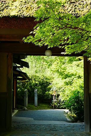 ↑苔むして禅宗らしい素朴さが感じられる茅葺門。御朱印は門を入って左の寺務所で受けられる