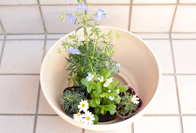 20180612_gardening_07