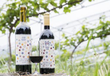 20180617_wine_00