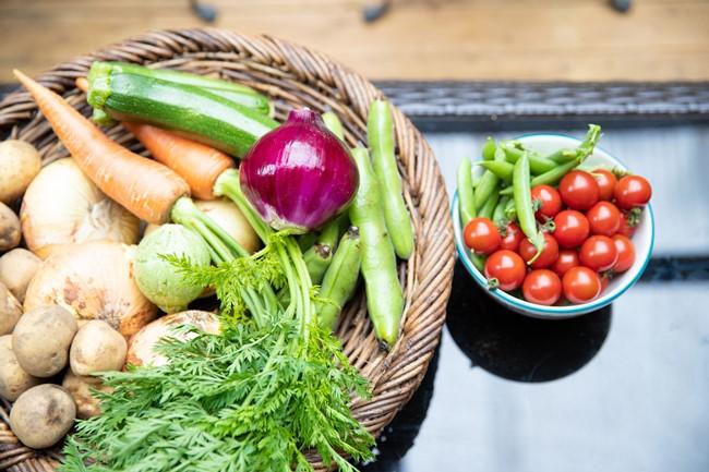 ウッドデッキのテーブルには、取材前日・当日に近所の農家から届いたという有機野菜たちが並んでいました