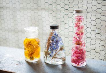 20180828_herbarium_main