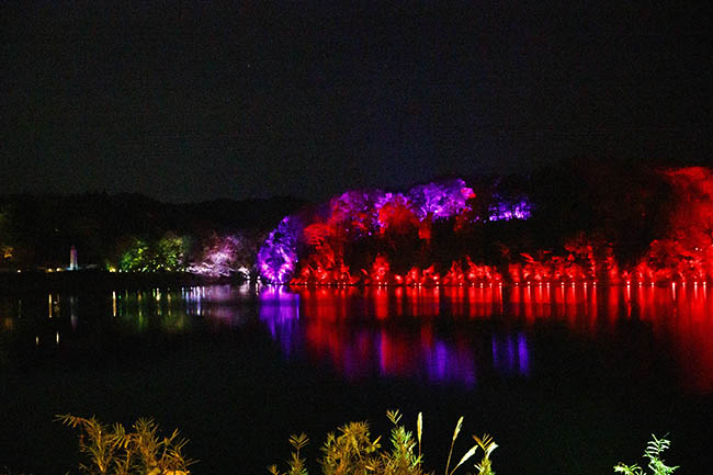 橋から湖をのぞむと、湖を縁取るように光の波が行ったり来たりしているのが一望できる。