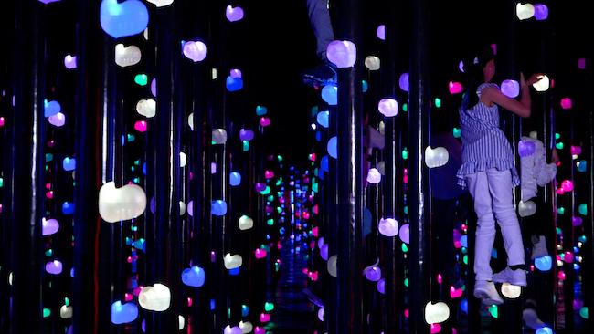 『光の森の3Dボルダリング』輝く玉石が空中に配置された空間。玉石をホールドとして握っていくと、玉石が色特有の音色を響かせながら光り輝く。