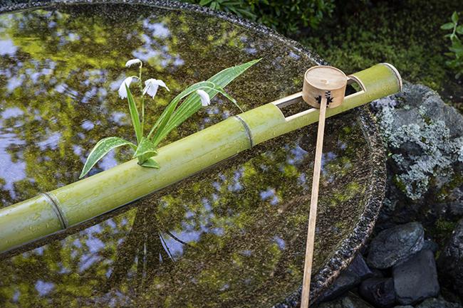 縁が広い盃型の手水鉢を用いた水琴窟。ほかにあまり例がなく、この形は「圓光寺型」と呼ばれる。