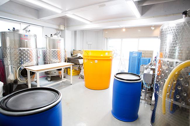 大型のステンレス発酵タンクと樹脂製の小型タンクなどが並ぶ醸造スペース。大型のタンクに入り切らなかった果汁を小型に入れるなど、組み合わせを工夫しながら作業を進める。