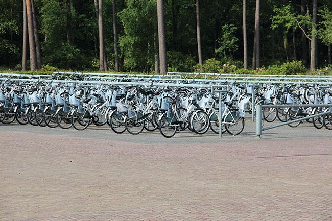 オランダの国立公園に駐輪されたホワイトバイク。