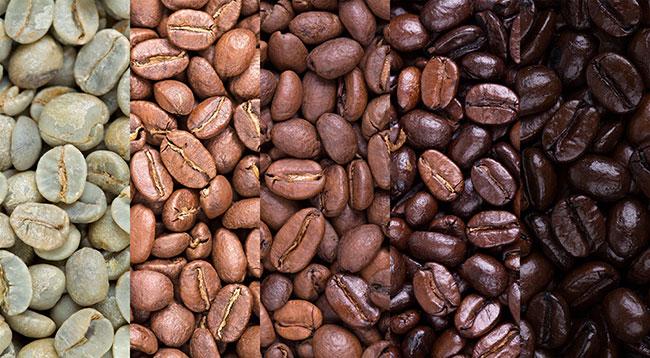コーヒー豆の焙煎時間が長くなるほど、深煎りになります。写真は、もっとも左が生豆で、色が薄い豆から浅煎り、中煎り、中深煎り、深煎り。